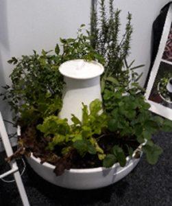 Plant with worm farm